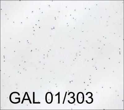 GAL 01-303